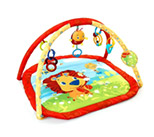 Infant Play Gyms