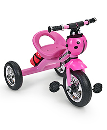 Kids Tricycle With Water Bottle Ladybug Design - Pink
